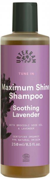 Lavendel Shampoo Tune In von Urtekram