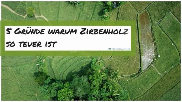 5-Gr-nde-warum-Zirbenholz-so-teuer-ist